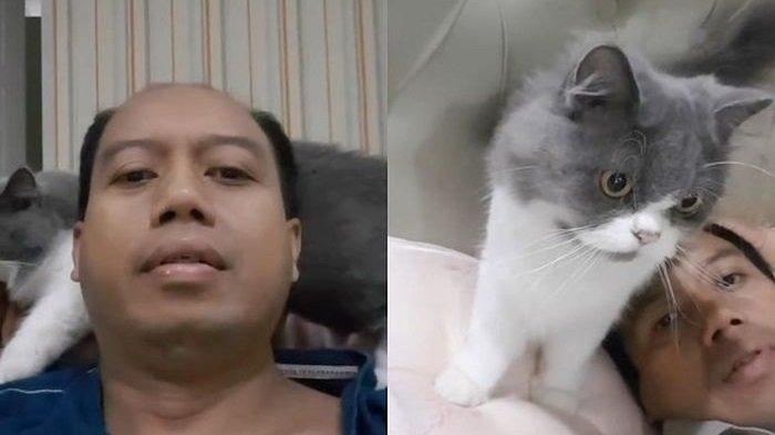 Kucing Setia Pak Sutopo dalam Melawan Kanker